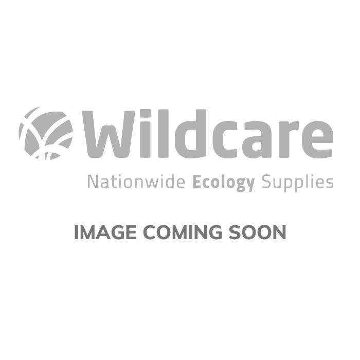 Piquet carré en bois pour clôture à tritons