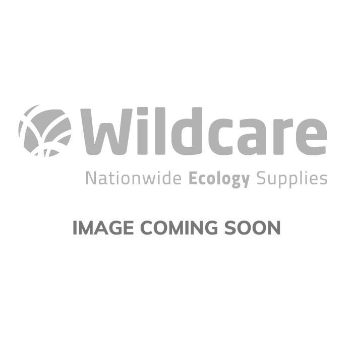 Gîte à chauves-souris plat 1FF avec panneau dorsal en bois